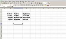 Jak ułatwić sobie pracę w Excelu - cz.3?