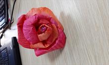 Róże z papierowej taśmy