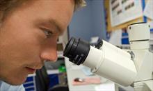 Badanie morfologiczne osadu moczu