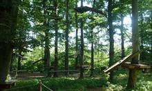 Jak aktywnie spędzić czas w parku linowym? Jak się przygotować?