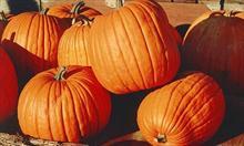 Jak dbać o zdrowie jesienią?