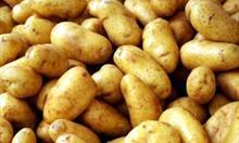 Jak przyprawić ziemniaki i z czym?