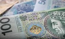 polski-zloty